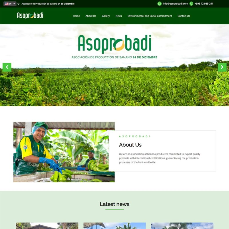 Website Asoprobadi